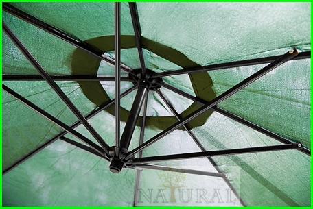 Parasol Grun C13