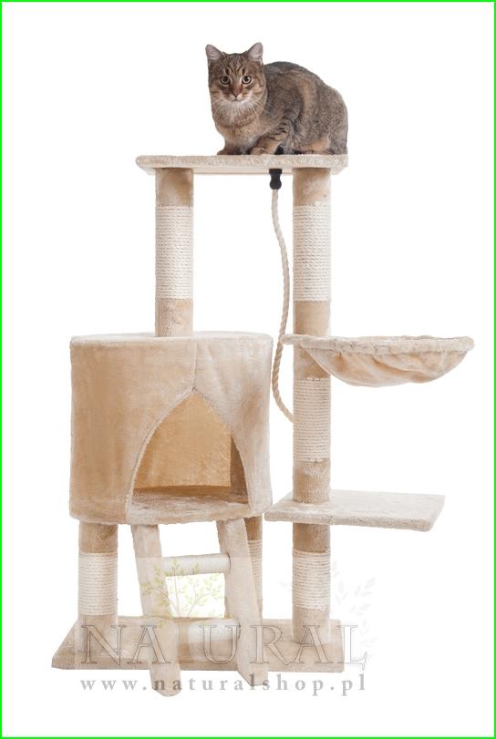 Drapak dla kota od naturalshop.pl